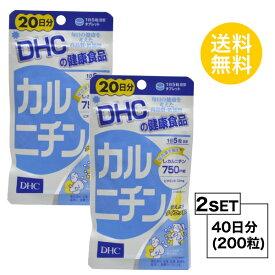 【お試しサプリ】【2個セット】【送料無料】 DHC カルニチン 20日分×2パック (200粒) ディーエイチシー サプリメント L-カルニチン ビタミン 健康食品 粒タイプ