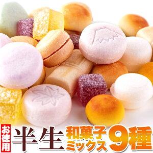 半生和菓子ミックス9種880g(440g×2袋)