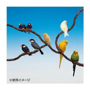 ●【送料無料】ファープラスト 鳥用組立て式止まり木 フレックス 4190 79PCS 84190799「他の商品と同梱不可/北海道、沖縄、離島別途送料」
