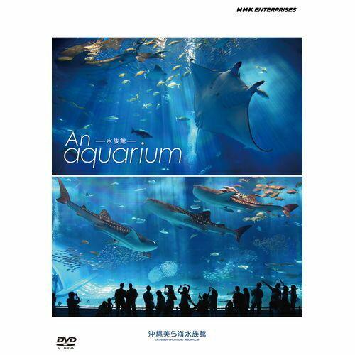 水族館 〜An Aquarium〜 DVD DVD