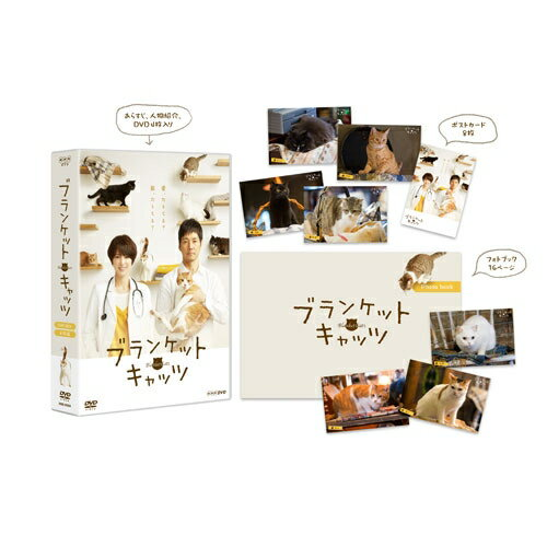 ブランケット・キャッツ DVD-BOX 全4枚