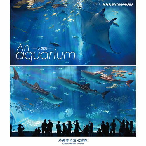 500円クーポン発行中!水族館 —An Aquarium 〜沖縄美ら海水族館〜 ブルーレイ