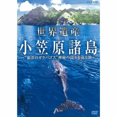 """世界遺産 小笠原諸島 """"東洋のガラパゴス"""" 神秘の島々を巡る旅"""