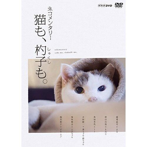ネコメンタリー 猫も、杓子も。 DVD