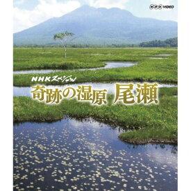 NHKスペシャル 奇跡の湿原 尾瀬 冬から初夏にかけて、最新の研究調査を交え雪が育んだ奇跡の湿原の物語へと誘います。ブルーレイディスク(Blu-ray Disc)