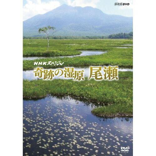 NHKスペシャル 奇跡の湿原 尾瀬冬から初夏にかけての知られざる尾瀬の様々な「時」の流れを余すことなく描きながら、最新の研究調査を交え雪が育んだ奇跡の湿原の物語へと誘います。