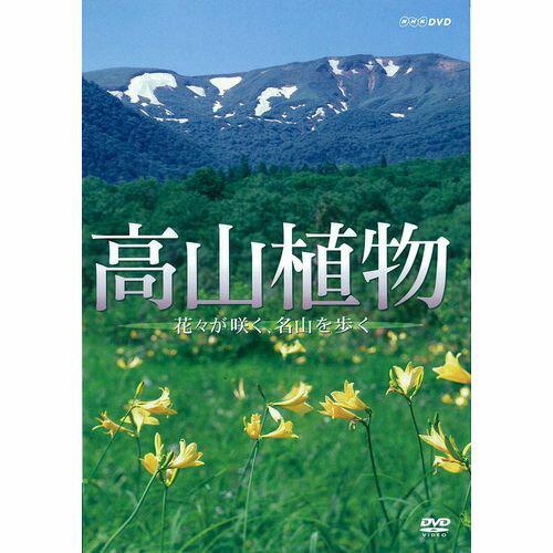 高山植物 〜花々が咲く名山を歩く〜
