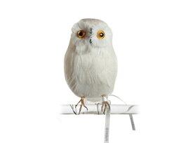 Owl White 【S】正面 フクロウ PUEBCO Artificial Birdsプエブコ アーティフィシャルバード108070【あす楽対応_東海】