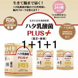 【アウトレットSALE】1+1+1=3箱お得セット ハタ乳酸菌 PLUS+ (霊芝+酵素)L-1
