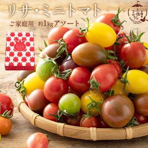 送料無料 国産 トマト 高知県 ご家庭用リサ・ミニトマト約1kg アソート [ ミニトマト フルーツトマト 詰め合わせ 訳あり ご家庭用 お取り寄せ 5種類以上 1kg 以上 高知 贈り物 ギフト お返し お