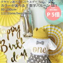 バースデーTシャツ 【one 1 】/ 1歳 誕生日 服 Tシャツ 男の子 女の子 ベビー 赤ちゃん キッズ 子供 子ども 2 3 one t…