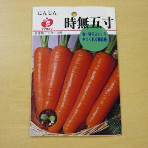 にんじん 時無五寸 種 固定種 ニンジン 人参 野菜 種子 追跡可能メール便選択可