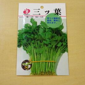 三つ葉 種 固定種 ミツバ 野菜 種子 追跡可能メール便選択可