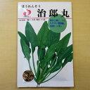 【ゆうメール選択可】ほうれんそう 治郎丸 種 固定種 ホウレンソウ ほうれん草 種子