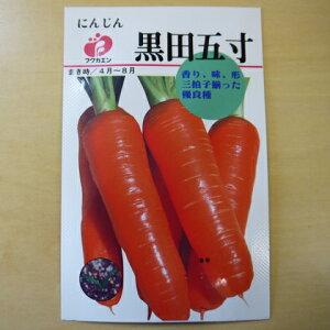 にんじん 黒田五寸 種 固定種 野菜 ニンジン 人参 種子 追跡可能メール便選択可