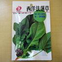 【ゆうメール選択可】西洋法蓮草 種 ほうれん草 種 固定種 ホウレンソウ ほうれんそう 種子