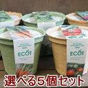 送料無料!野菜 栽培セット 選べる5個セット エコットM5個 エコポット 栽培キット 家庭菜園 ベランダ菜園 エコ プレゼ…