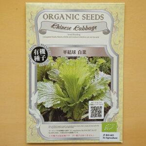 有機種子 固定種 半結球 白菜 種 野菜 種子 オーガニック グリーンフィールドプロジェクト 追跡可能メール便選択可【大袋・お取り寄せ】