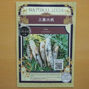 無農薬 自然栽培の種 固定種 三善大根 種 在来種 大根 ダイコン だいこん 野菜 種子 国産 オーガニック グリーンフィールドプロジェクト 追跡可能メール便選択可