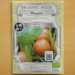 有機種子 固定種 かぼちゃ 種 赤皮栗 野菜 種子 カボチャ 南瓜 オーガニック グリーンフィールドプロジェクト 追跡可能メール便選択可