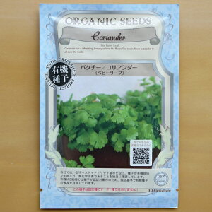 有機種子 固定種 パクチー ベビーリーフ 種 コリアンダー 野菜 種子 オーガニック グリーンフィールドプロジェクト 追跡可能メール便選択可【小袋】