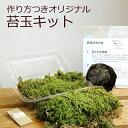 苔玉キット つくり方説明書付 ハイゴケ 手作り 初心者 こけだまの材料 かんたん作成キット 苔・苔玉用に配合した土・…
