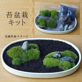 盆栽苔が主役の苔盆栽!材料すべてお届けします 苔盆栽(こけぼんさい)キット〜富士砂