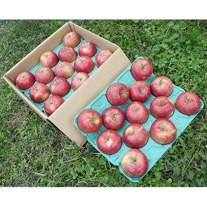 サンふじ りんご 約10kg(24〜32個) さんふじ リンゴ 蜜入り 長野県 信州 家庭用 贈答用 贈り物 ギフト プレゼント