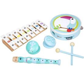 クラシックワールド トゥーカン ミュージック セット 知育玩具 楽器玩具 誕生日 誕生日プレゼント 音楽 木のおもちゃ 木製 赤ちゃん 2歳 3歳 出産祝い 男の子 男 女の子 女 子供 おもちゃ 音の出るおもちゃ|プレゼント 楽器 楽器のおもちゃ 玩具 知育 オモチャ こども キッズ