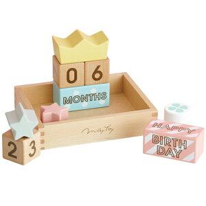 エド・インター Memory Biscuits 積み木 ブロック 誕生日 誕生日プレゼント 木のおもちゃ 1歳 2歳 3歳 木製 子供 男の子 男 女の子 女 赤ちゃん ベビー 出産祝い つみき ギフト 積木 キッズ 知育