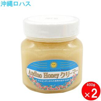 アンディーノ straight honey honey creamer 400g2 unit set