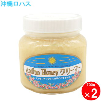アンディーノ straight honey honey creamer 700g2 unit set