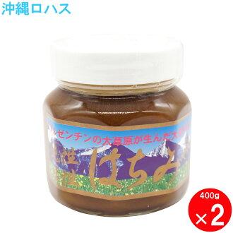 アンディーノ straight honey pure active honey 400g2 unit set
