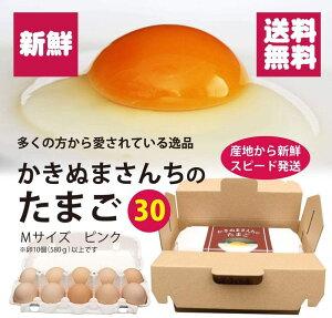 かきぬまさんちのたまご(ピンク玉30個)創業64年の柿沼商店