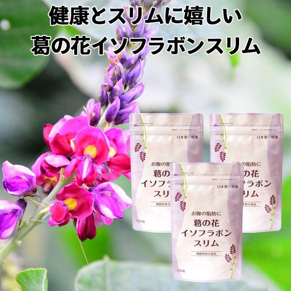 サプリ 葛の花 お腹の脂肪に 葛の花イソフラボンスリム 30日分120粒入 3袋セット サプリ 葛の花 ダイエット サプリメント サプリ 機能性表示食品 送料無料