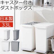 薄型・ゴミ箱・ごみ箱・分別ダストボックス・分別ゴミ箱・ごみばこ・くずかご・ペール