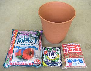 南国の植物栽培セット「☆」