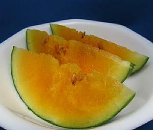 【4月下旬以降発送予定】小玉すいか オレンジNo.1  2ポットセット 野菜 苗 珍しい スイカ 西瓜 オレンジ色のスイカ