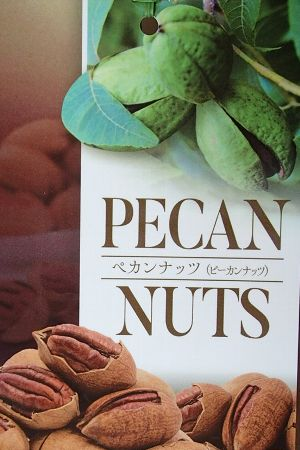 ペカンナッツ  ピーカンナッツ :果樹苗
