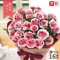 【母の日プレゼント】カーネーションで感謝の気持ちを伝えたい!花束・鉢植えなどのお勧めは?