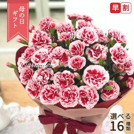 まだまだ間に合う母の日 ギフト 選べるカーネーション 16色 母の日 贈り物 プレゼント 花 鉢植え 5号鉢 送料無料 母の日2021