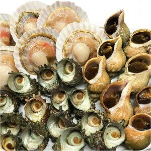 海鮮BBQセット(冷凍) ほたて片貝・青つぶ貝・さざえの中から2種類選べる【送料無料】【BBQ】【バーベキュー】
