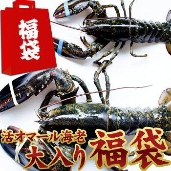天然活きオマール海老大入り15,000円福袋!新春大特価!送料無料!