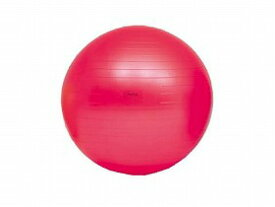 【トーエイライト】ボディボール55筋トレ エクササイズ バランスボール 体幹 子供 お年寄り 高齢者