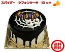 ハロウィンケーキ ハロウィン ケーキ ハロウィン お菓子 チョコ プレゼント ギフト 送料無料 【スパイダー シフォン…