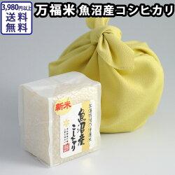 万福米魚沼産コシヒカリ(300g)