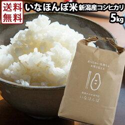 いなほんぽ米5kg