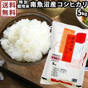 特別栽培米南魚沼産コシヒカリ5kg
