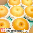 贈答用!土田農園の日本梨 新潟県産 幸水 3kg(6〜9玉)【幸水梨】【8月下旬頃から順次発送】【ギフト・贈り物・内祝い…