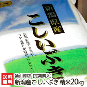 【定期購入】新潟産 こしいぶき 精米20kg 袖山商店 米屋の蔵出し米【新潟産コシイブキ/白米】【送料無料】